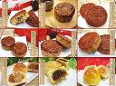 【送料無料】9種10個の欲張り月餅セット横浜中華街でも行列の内閣総理大臣賞褒賞の月……