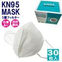 【送料無料 即納】KN95マスク 5層構造 高機能 30枚