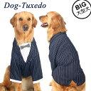 犬服 犬 服 紺スーツ フォーマル タキシード 男の子 誕生日 結婚式 イベント ドッグウエア 大型犬 ネイビー その1