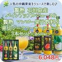 お中元 贅熟 パインアップル& 大宜味村産 青切(あおぎり)