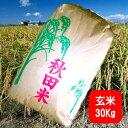 玄米 20kg 送料無料 令和元年 奈良県産 ひのひかり玄米 20kg