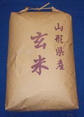 玄米食で健康に!23年産山形県産はえぬき玄米10kg