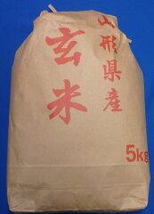 玄米食で健康に!23年産山形県産はえぬき玄米5kg