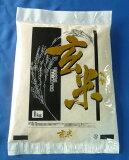 【送料無料お試し米】令和2年産 山形県産 はえぬき 玄米1kg