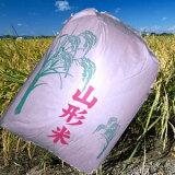 【訳あり】【送料無料】28年産山形県産はえぬき精米27kg