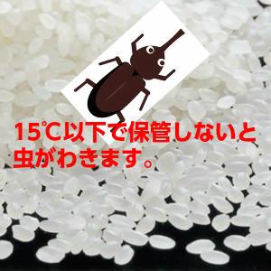 新米【送料無料】30年産山形県産はえぬき玄米30kg【沖縄・離島別途1000円加算】