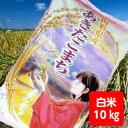 【送料無料】1年産山形県産あきたこまち白米10kg【沖縄別途...