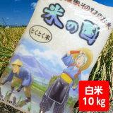 【送料無料】とくとく米10kg【沖縄離島500円加算】