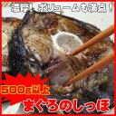 塩焼き、バター焼きに、まぐろの尾肉 鮪天然マグロ まぐろのしっぽ(尾) 1kg
