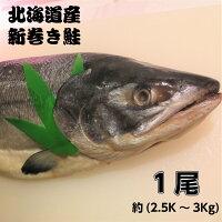 北海道産新巻鮭(秋鮭)一本物【約2.5~3キロ】送料無料・化粧箱入お歳暮贈り物お祝お正月につきもの北海道の味絶品の新巻き鮭丸ごと塩焼き以外いろいろな料理に使えます天然鮭