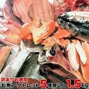 【訳ありお徳用】お魚アウトレット 5種類以上 1.5kg以上 送料無料 お酒のあてに最高 BBQ ごはんのお供 訳アリ干物 訳あり魚の切り身
