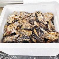 殻付き牡蠣7kg70個前後送料無料岡山県日生産ひなせカキオコ殻付きカキ