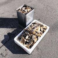 殻付き牡蠣10kg100個前後送料無料岡山県日生産ひなせカキオコ