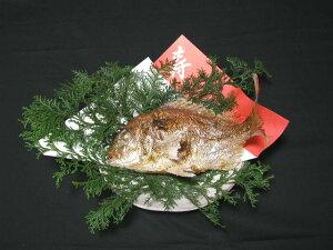 明石名産【魚秀の焼鯛】天然・明石鯛・生の時950g位