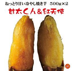 焼き芋東西激甘いも対決西の横綱紅はるか「甘太くん」東の横綱紅はるか「紅天使」冷やし焼き芋お試し送料無料