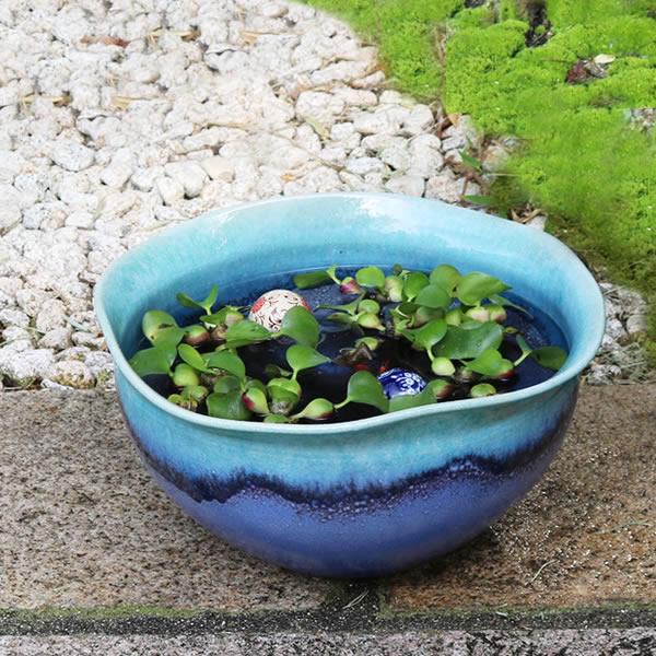 水鉢 すいれん鉢 信楽焼すいれん鉢 メダカ鉢 金魚鉢 睡蓮鉢 陶器スイレン鉢