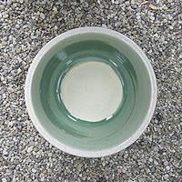 信楽焼の睡蓮鉢