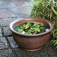 水鉢手づくり睡蓮鉢信楽水鉢陶器スイレン鉢メダカ鉢金魚鉢手水鉢