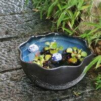 12号青釉ハケメ花型水鉢