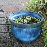 スイレン鉢信楽焼睡蓮鉢大型水鉢陶器水鉢すいれん鉢金魚鉢メダカ鉢めだか鉢金魚鉢