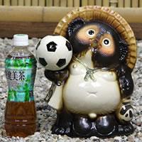 信楽焼き8号サッカー狸