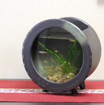 信楽焼 き水槽 丸型(茶色)陶器水槽 陶器とガラスがコラボ インテリア水槽 金魚鉢 メダカ鉢 陶器 水鉢 めだか鉢 信楽焼金魚鉢 鉢 はす鉢 睡蓮鉢 su-0123