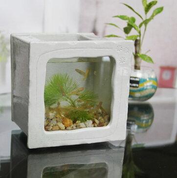 信楽焼 き水槽 角型小(白色)陶器水槽 陶器とガラスがコラボ インテリア水槽 金魚鉢 メダカ鉢 陶器 水鉢 めだか鉢 信楽焼金魚鉢 鉢 はす鉢 睡蓮鉢 su-0213