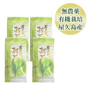 [Points up to 12 times today] ] [Set of 4 bags] Yakushima Shincha 80g [Free shipping Chairman's Award of the National Organic Farming Promotion Committee Hayao Kurita Organic Pesticide JAS Certified Japanese Tea]