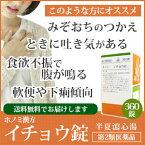 【第2類医薬品】ホノミ漢方 イチョウ錠 半夏瀉心湯  360錠