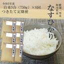 米 令和2年産 つきたて定期便栃木県産なすひかり精米5合(7...