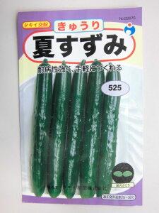 野菜種きゅうり種夏すずみ耐病性強く手軽に作れる