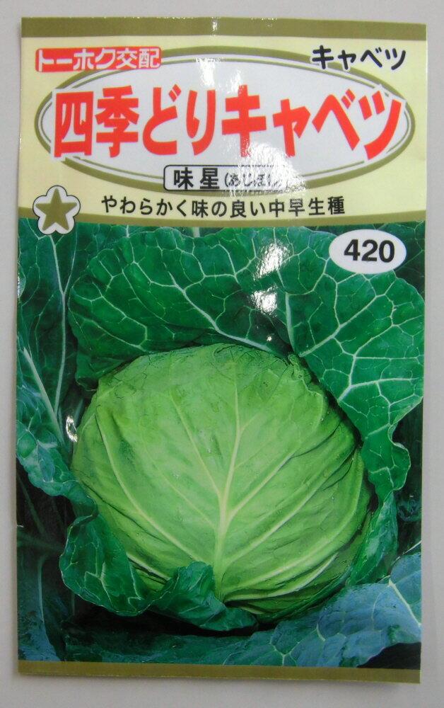 四季どりキャベツ種中早稲種味星春・夏・秋蒔き