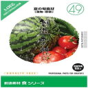 イメージランド 創造素材 食(49)夏の旬食材(果物・野菜) 935682