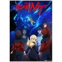 機動戦士ガンダムNT DVD