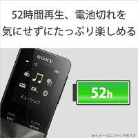 4221422016_3.jpg