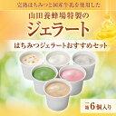 【山田養蜂場】はちみつジェラートおすすめセット 1箱(6個入)