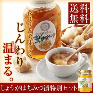 はちみつ しょうが 国産 生姜はちみつ 蜂蜜 生姜蜂蜜 送料無料 送料込 200g しょうが湯 生姜は...
