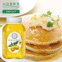 【山田養蜂場】レモンはちみつ漬 900g入 ギフト プレゼン