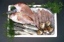 [産直大分県] 旬のお魚おまかせコース1【楽ギフ_のし】 - 奥村鮮魚センター