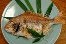 料亭の味をご家庭へお届け致します豊後水道大分県産天然鯛の姿焼き一尾4〜5人前サイズ
