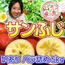 山形のりんごはうまいずね〜山形県産 サンふじ 訳あり 約5kg バラ詰め