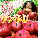 山形のりんごはうまいずね〜山形県産 サンふじ 訳あり 約10...