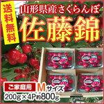 山形県産さくらんぼ佐藤錦フードパック4P