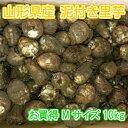 山形県産 泥付き 里芋 さといも 1箱 お徳用 Mサイズ 10kg【山形産 泥付き サトイモ 里芋 芋煮 さといも ...