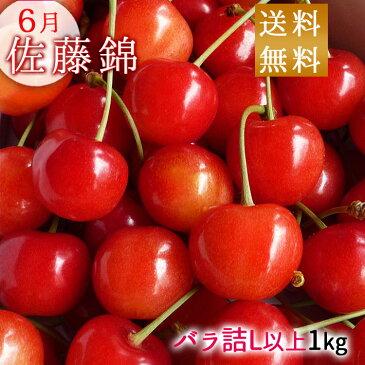 さくらんぼ 佐藤錦 山形県産1kg バラ詰め (L以上のサイズお任せ) 送料無料