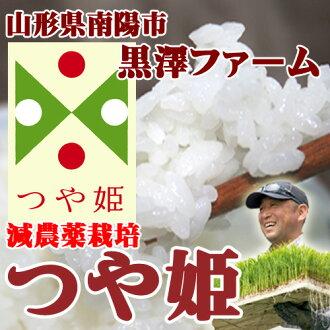 By 2015, new Kurosawa farm gloss white 5 kg gifts gifts gifts to family Yamagata rice