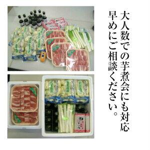 ハロウィンギフトプレゼント山形風しょうゆ味芋煮セット(4人前)【クール便】【宅配Box不可】【ラッピング不可】【送料無料】