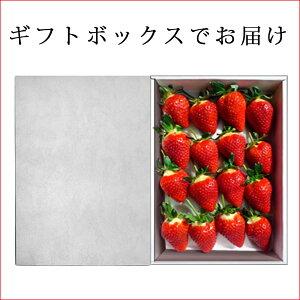 山形県の新品種のいちご【おとめ心】大粒16粒入りギフト箱入