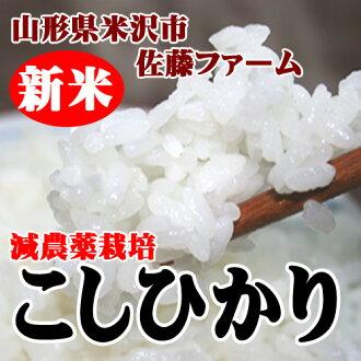 2013 Rice decreased pesticide Koshi Hikari 2 kg