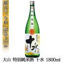 令和 新元号ラベル 日本酒 大山 特別純米 十水 新年号 数